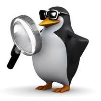 Lancement de Google Penguin 4