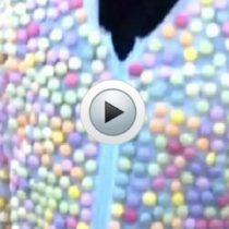 Vidéo : vêtu de Mentos il plonge dans du cola !