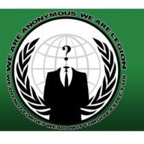 Le ministère de la Défense victime des Anonymous pour venger Remi Fraisse