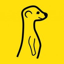 Meerkat : démarrage fulgurant pour l'application de streaming vidéo en direct