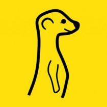 Meerkat : démarrage fulgurant pour l'application de streaming vidéo en direct